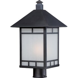 Oralia Outdoor 1-Light Lantern Head By Bloomsbury Market Outdoor Lighting