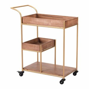 Vasilos Bar Cart with Tray by Everly Quinn