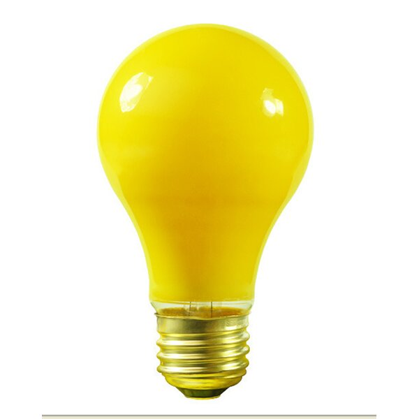 25W 130-Volt Light Bulb (Set of 25) by Vickerman