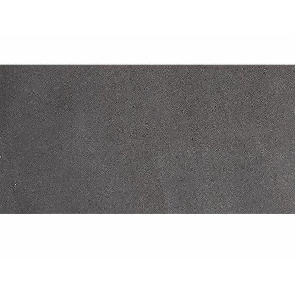 Lava 12 x 24 Basalt Field Tile in Black Honed by Parvatile