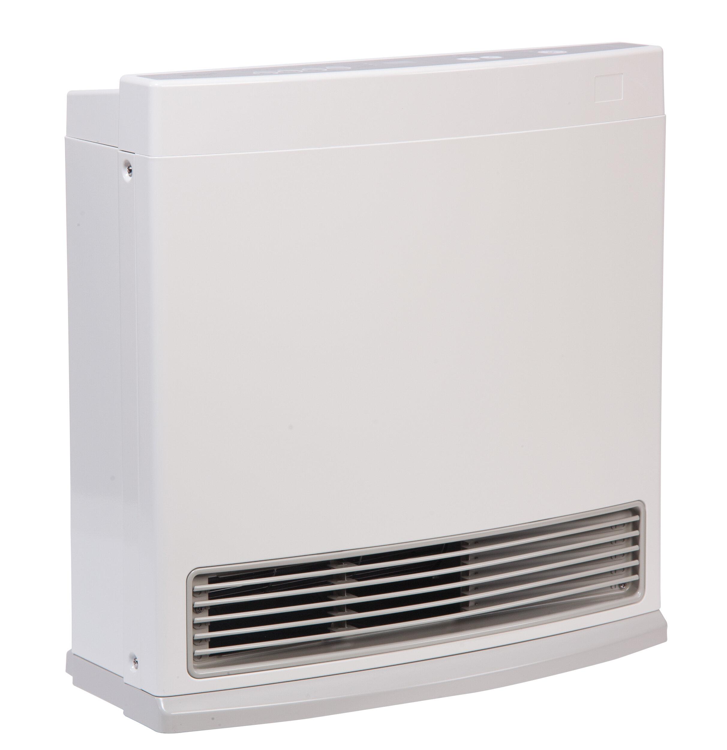 Rinnai R Series 10 000 Btu Electric