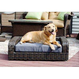 Rattan Dog Sofa