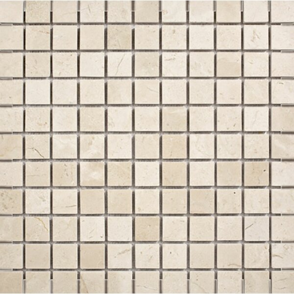 Crema Marfil 1 x 1 Stone Mosaic Tile Polished by Parvatile