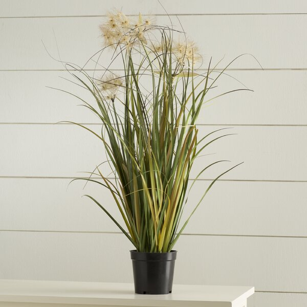 Artificial Flowering Grass in Black Pot by Highlan