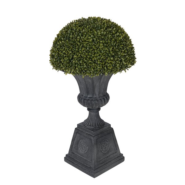 Artificial Boxwood Half Ball Topiary in Urn by House of Silk Flowers Inc.