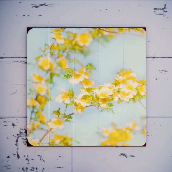 Yellow Flowers Photographic Print by August Grove