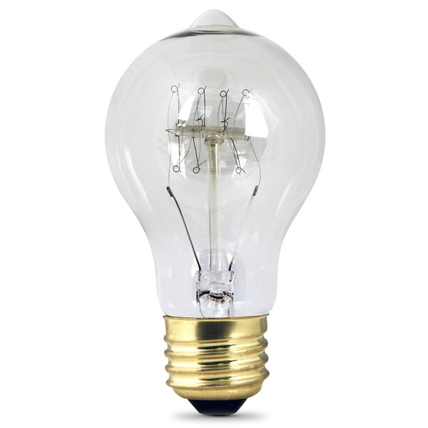 60W Incandescent Light Bulb by FeitElectric
