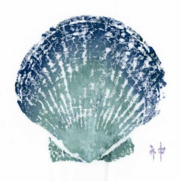 Shell Placemat (Set of 4) by FishAye Trading Company