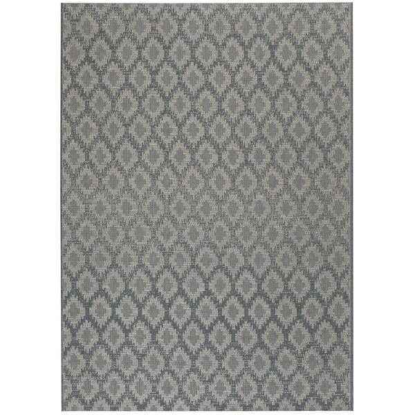 Hanish Blue Diamond Indoor/Outdoor Area Rug by House of Hampton