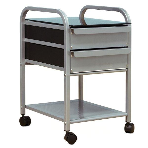 Dash 2 Drawer Mobile Vertical Filing Cabinet by Latitude Run