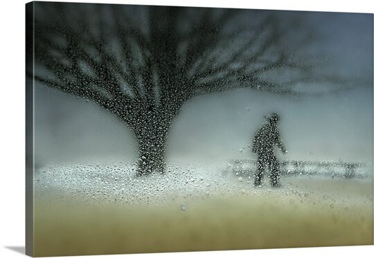 Man in Nature by Shenshen Dou Wall Art on Canvas by Canvas On Demand