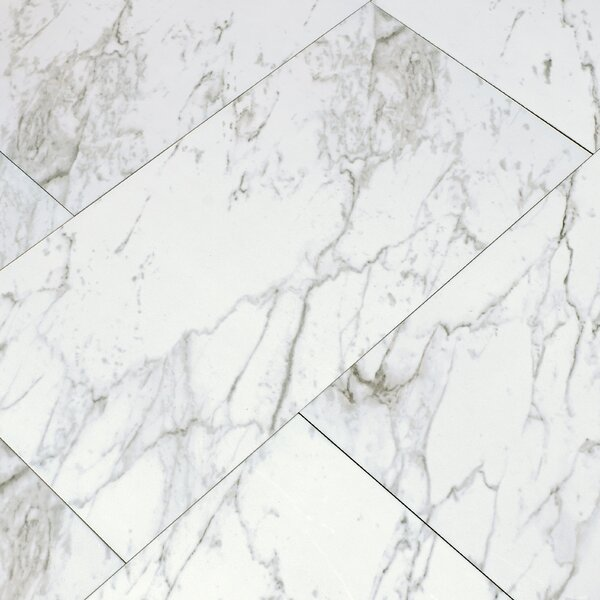 Carrara 12 x 24 Porcelain Field Tile in White by MSI