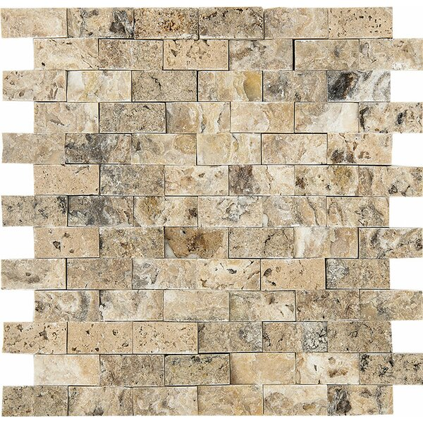 Split Face 1 x 2 Stone Mosaic Tile in Antico by Parvatile