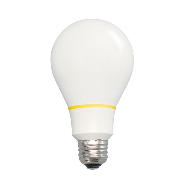 100W Standard Incandescent Light Bulb by The Finally Light Bulb Company