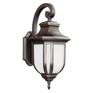 Teri 1-Light Outdoor Wall Lantern By Fleur De Lis Living Outdoor Lighting