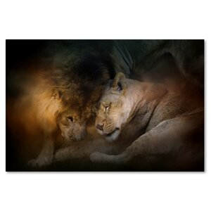 'Lion Love' Graphic Art Print on Wrapped Canvas by Trademark Fine Art