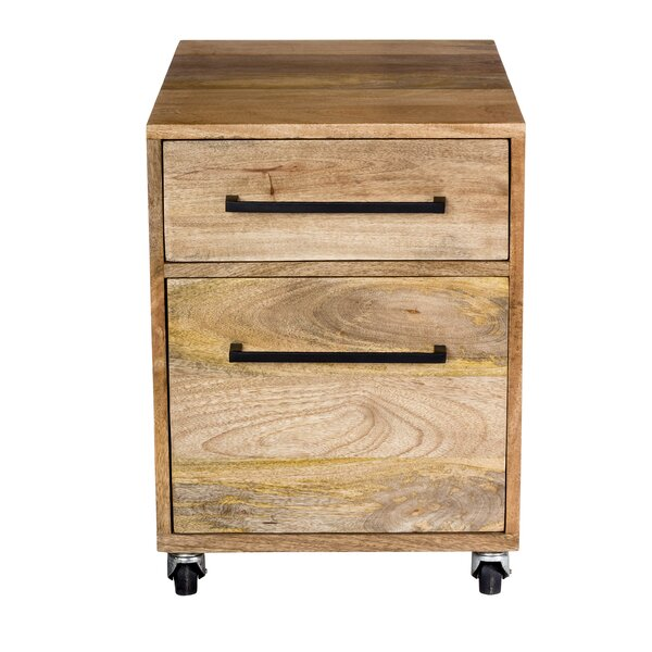 Shery 2-Drawers Mobile Vertical File by Union Rustic