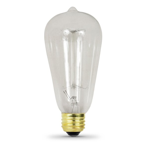 60W 120-Volt Incandescent Light Bulb by FeitElectric