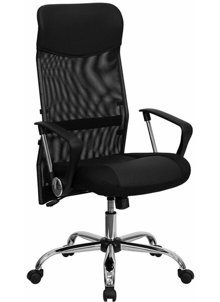 Dunson High-Back Ergonomic Mesh Office Chair by Ebern Designs