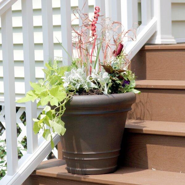 Octavio Flower Resin Pot Planter by Charlton Home