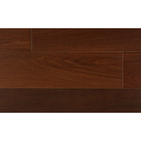 7-3/4 Solid Brazilian Walnut Hardwood Flooring in Brown by IndusParquet