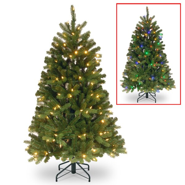 Green Spruce Artificial Christmas Tree with Colored and White Lights with Stand by The Holiday Aisle