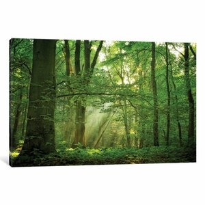 Breathe Photographic Print on Wrapped Canvas by Alcott Hill