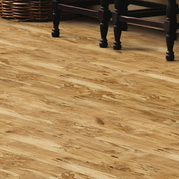 Revolutions 5'' x 51'' x 8mm Maple Laminate Flooring in Natural by Mannington