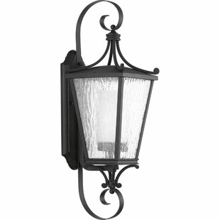 Progress Lighting Outdoor Wall Sconce Progress lighting wayfair cadence 1 light wall lantern by progress lighting workwithnaturefo