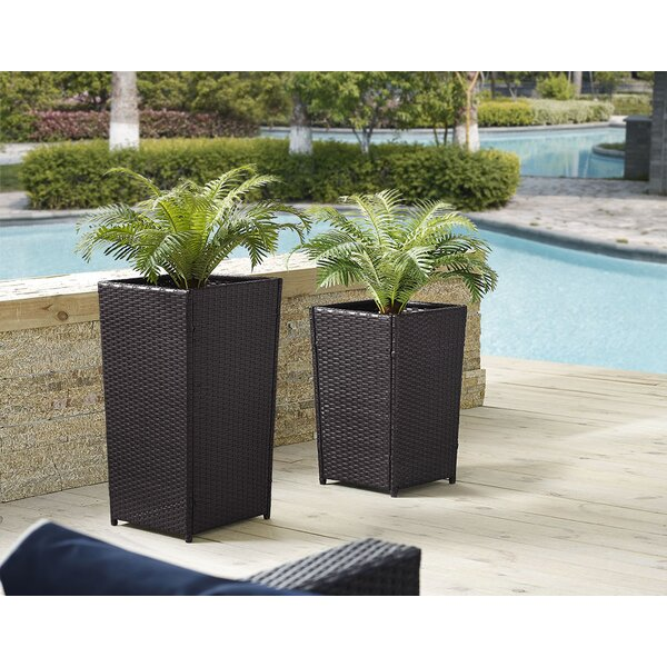Brandy 2-Piece Planter Box Set by Mistana