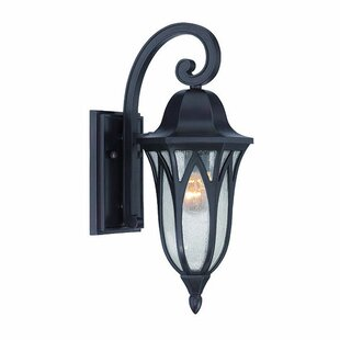Besaw 1-Light Outdoor Wall Lantern By Fleur De Lis Living Outdoor Lighting