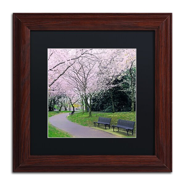 Spring Path by CATeyes Framed Photographic Print by Trademark Fine Art