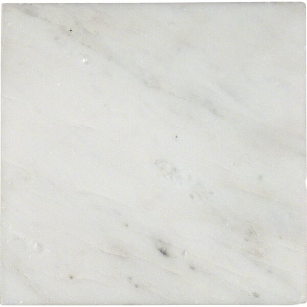 6'' x 6'' Marble Field Tile in Arabescato Carrara by MSI