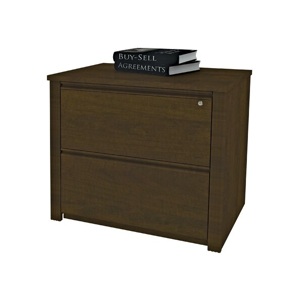 Bormann 2-Drawer File by Red Barrel Studio