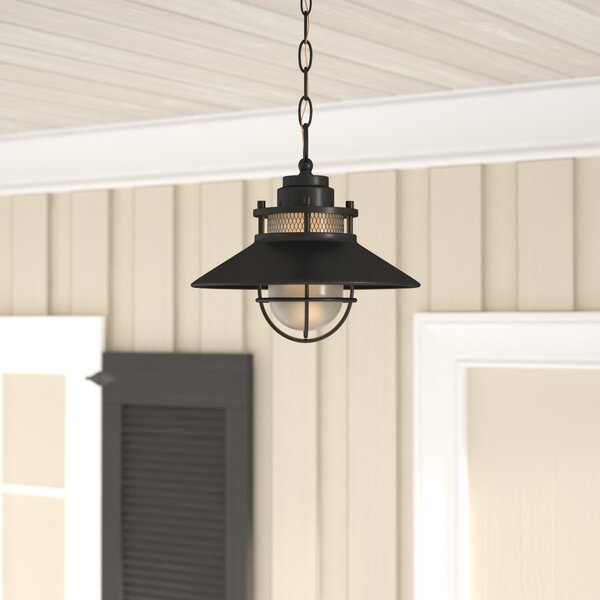 Waterton 1-Light Outdoor Pendant by Breakwater Bay