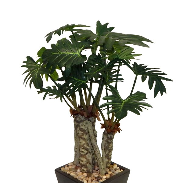 Real Touch Split Bonsai Philo Plant in Planter by Bay Isle Home