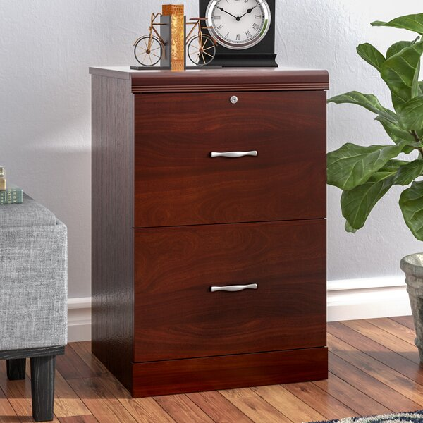 Haynes 2 Drawer Vertical File by Charlton Home
