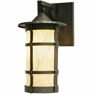 Shop For Pasadena 1-Light Outdoor Wall Lantern By Steel Partners