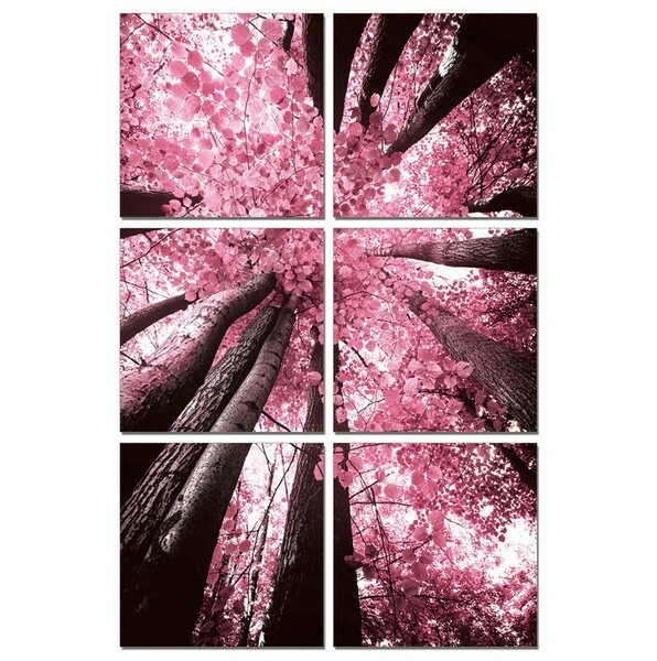 Blossom Trees 6 Piece Photographic Print Multi-Piece Image on Canvas by Latitude Run