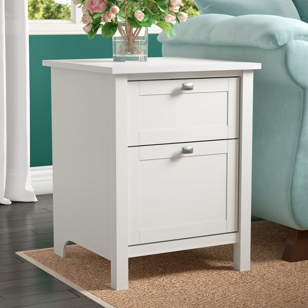 Hiott 2 Drawer Vertical Filing Cabinet by Three Posts