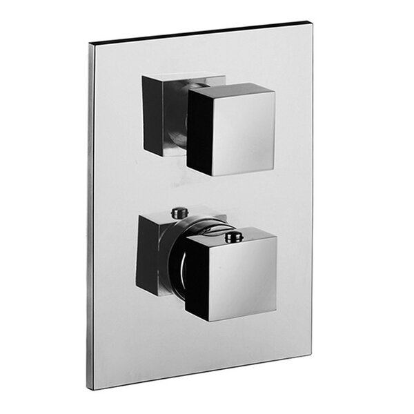 Level Concealed Thermostatic Two Outlet Diverter Shower Faucet Trim by WS Bath Collections