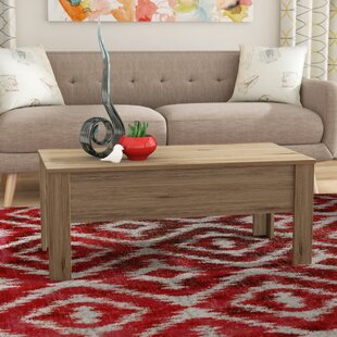 Chickerell Lift Top Coffee Table with Storage