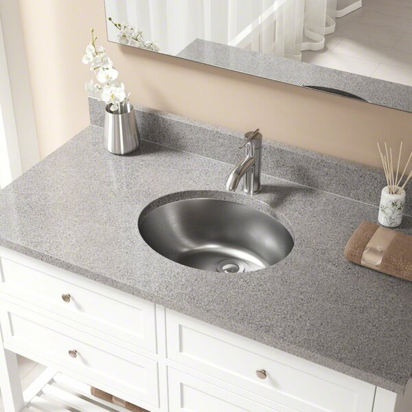 Stainless Steel 19 Dual Mount Bathroom Sink with Overflow by MR Direct