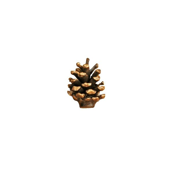 Lodgepole Pine Cone Novelty Knob by Timber Bronze 53, LLC