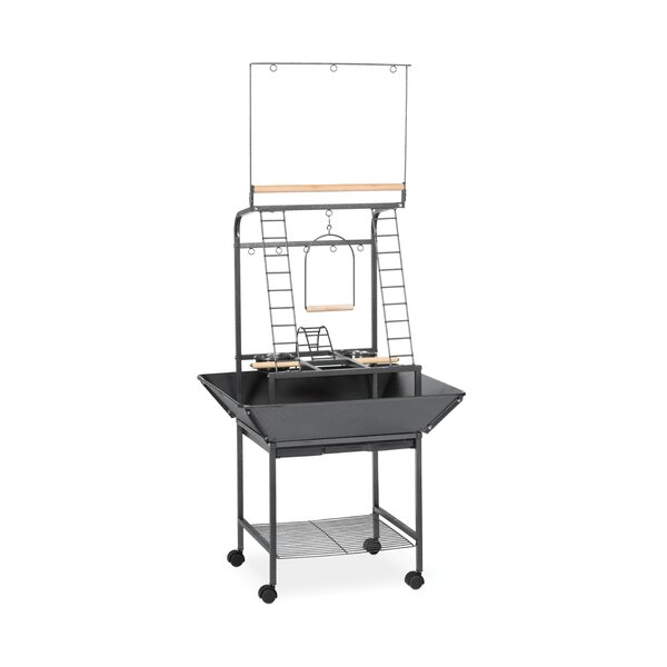 Small Parrot Playpen Stand by Prevue Hendryx