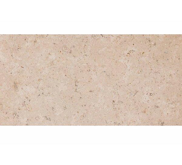 Dijon 12 x 24 Stone Field Tile in Honed Beige by Parvatile