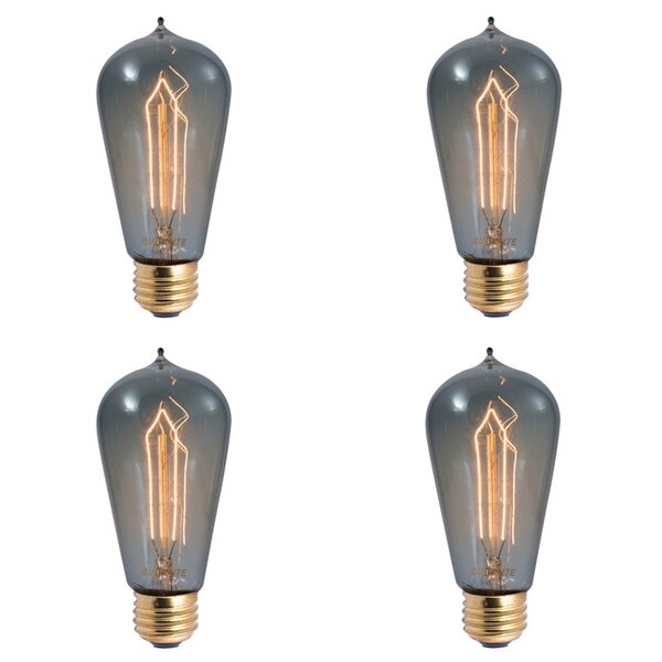 40W E26 Dimmable Incandescent Light Bulb Smoke (Set of 4) by Bulbrite Industries