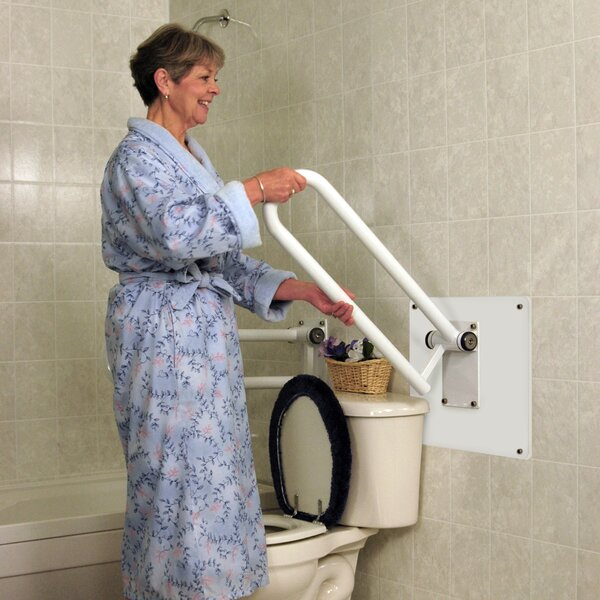 Wall Mount Plate for PT Rail by HealthCraft
