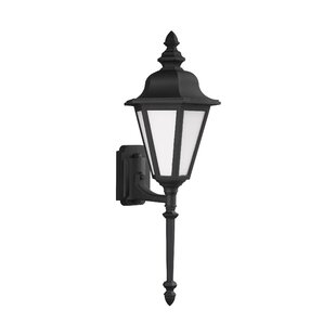 Palmdale 1-Light Glass Shade Outdoor Wall Lantern By Darby Home Co Outdoor Lighting