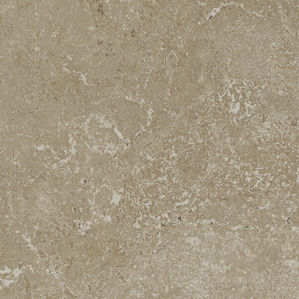 Kent 12 W x 12 Porcelain Field Tile in Pale Beige by Parvatile